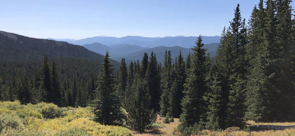 Tanglewood Trail Colorado