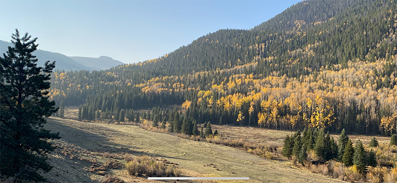 Rio Grand National Forest