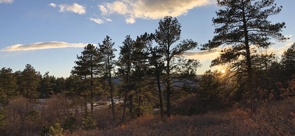 Dawson Butte Ranch Open Space Trail, CO