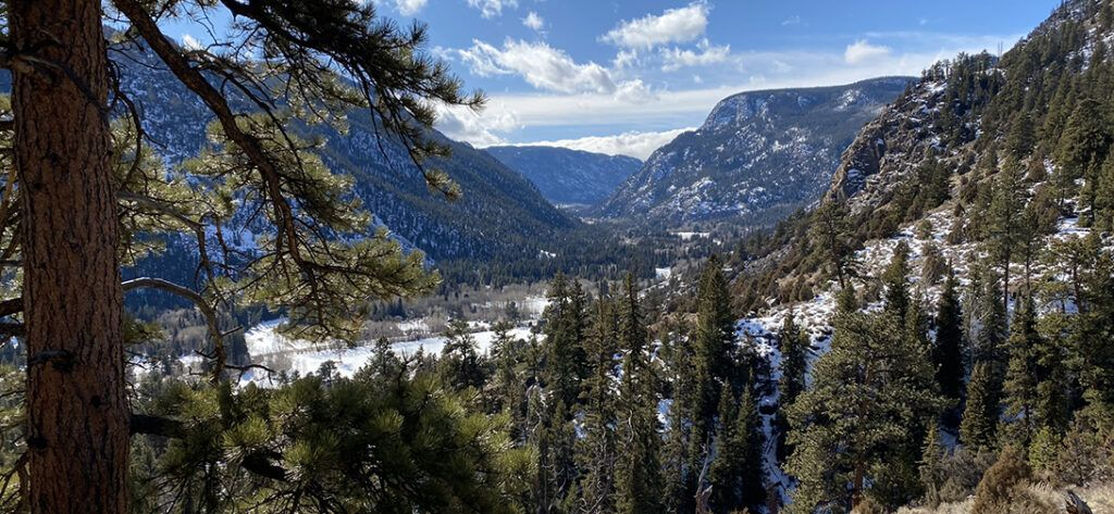 Roaring Creek Trail Colorado
