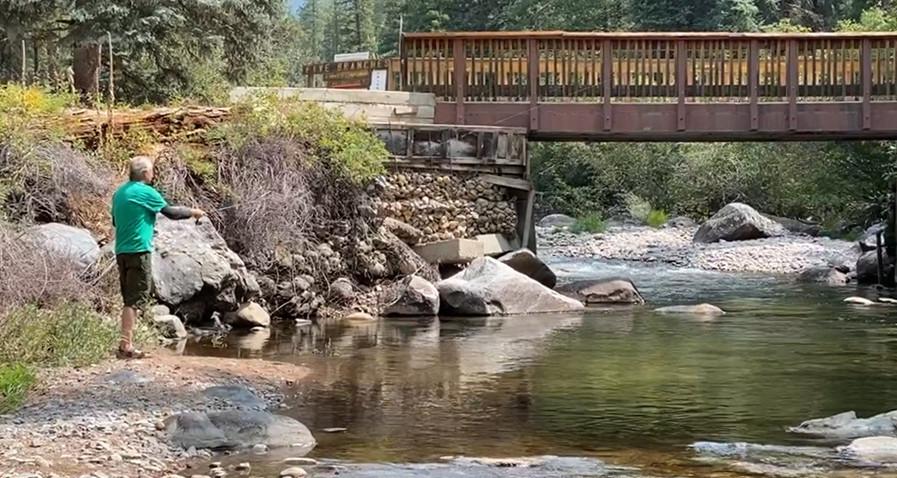 Los Pinos River Trout Fishing